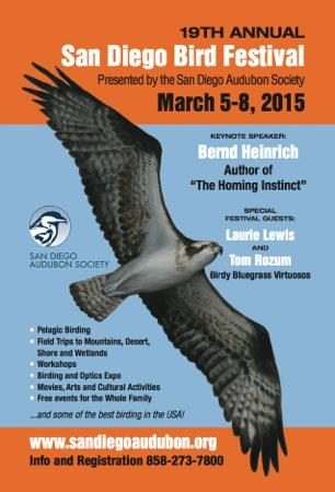 San Deigo Audubon's Bird Festival Flier