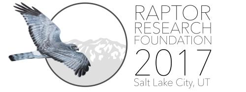 RRF2017conference_FINAL-01.jpg