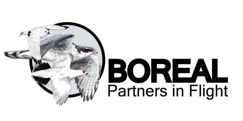 BPIF Logo-C-01